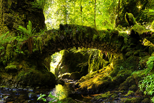 lori-rocks: Secret Tooth Fairy Bridge by Richard Hunter