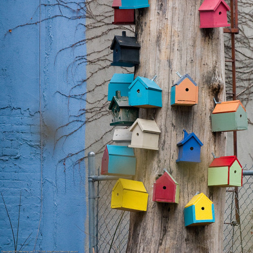 Bird Houses / 20071230.10D.46705 / SML by See-ming Lee 李思明 SML on Flickr.Vinegar Hill, New York, NY, US