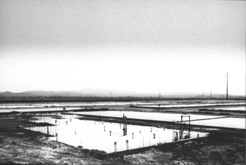 cavetocanvas:  Lewis Baltz, Foundation Construction, Many Warehouses, 2891 Kelvin, Irvine, 1974