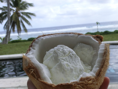 m—ist:  yumm :) coconut icecream ;)
