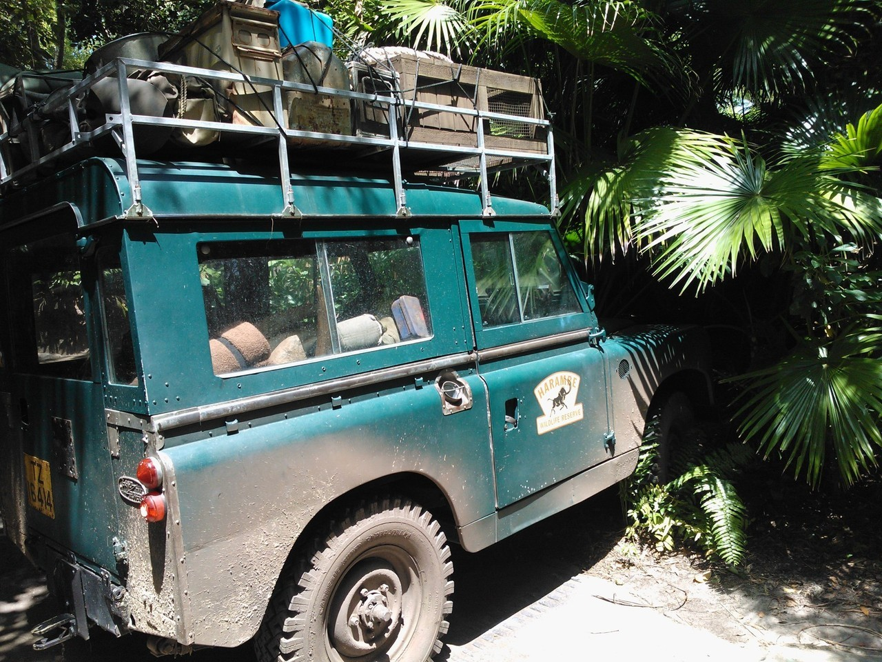#Landrover #Defender Spotted At Disney Animal Kingdom