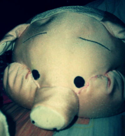I really miss my pigg T.T