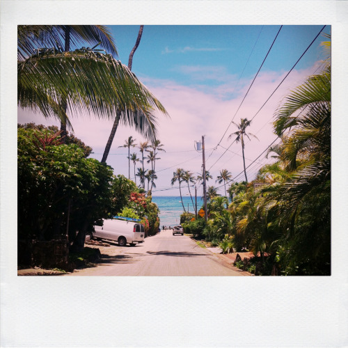 ryaninwonderland:  this looks like paradise
