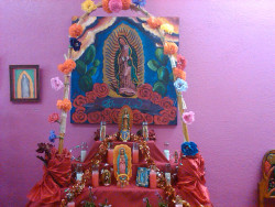 virgin mexico altar virgen de guadalupe velas virgencita