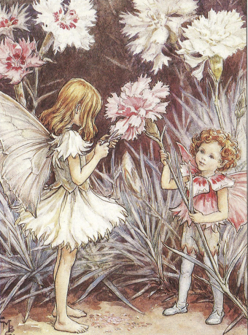 The Pink Fairies illustrated by Cicely Mary Barker