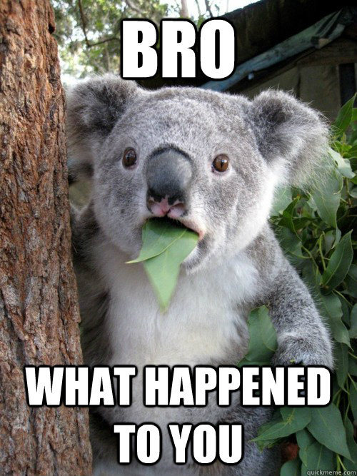 funny-memes-blog:  only thing I can think of when I see angry koala become a meme