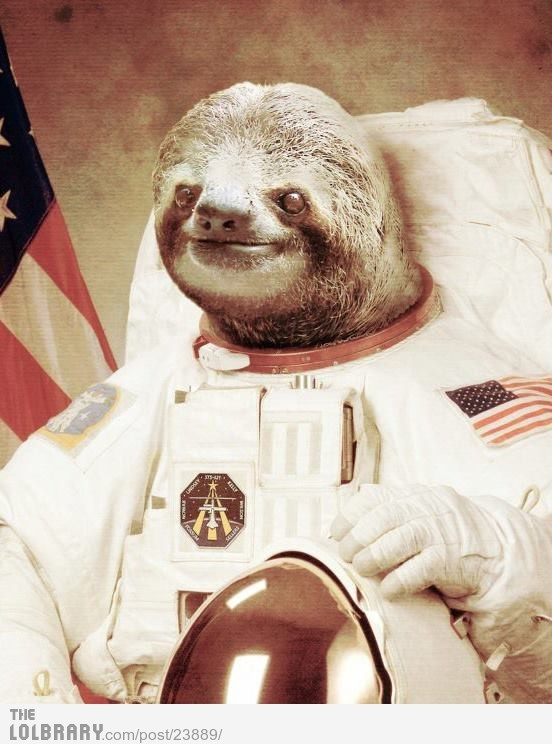 ittfunnyassshit:  AstroslothFollow this blog for the best new funny pictures every day