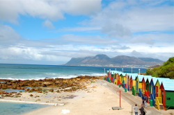 False bay Beach on the fairest cape of them all!