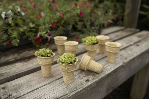 DIY herb ice cream via HGTV