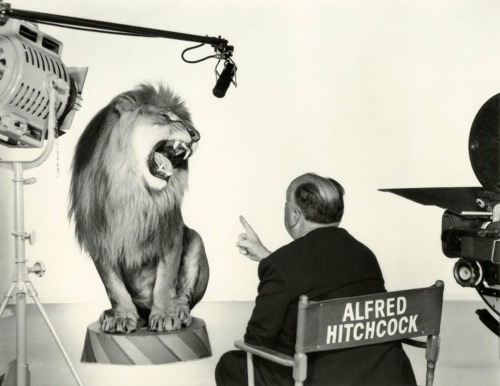 Alfred Hitchcock directing the MGM lion, circa 1958. Photograph by Sinclair Bull.