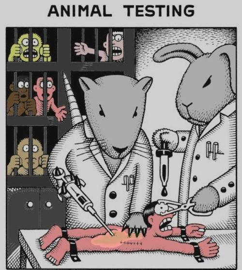 Educate yourself on the topic. Google: VIVISECTION