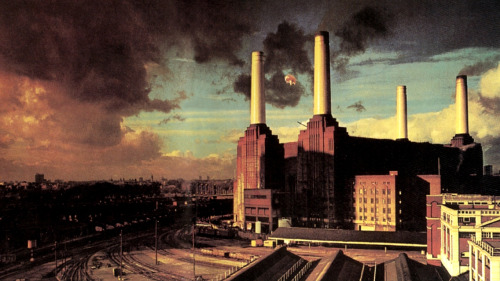 albumwallpapers:  Pink Floyd, Animals