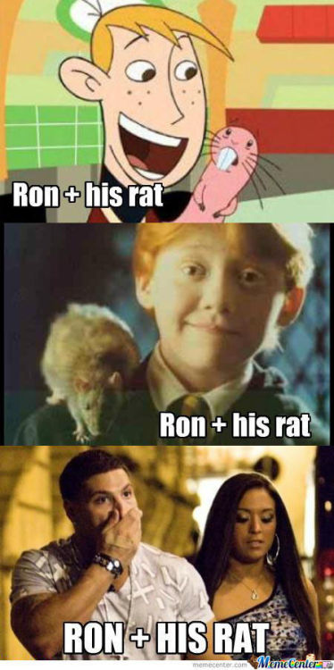 memecenterz:  Ron And His Rat