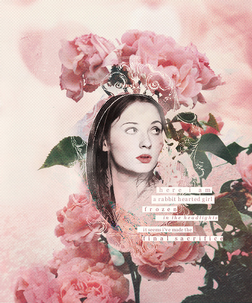 sansa stark | pink →  asked by anon