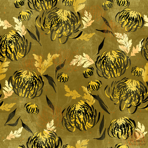 paperbicyclecreative:  101 Florals: Chrysanthemum by Lindsay Nohl