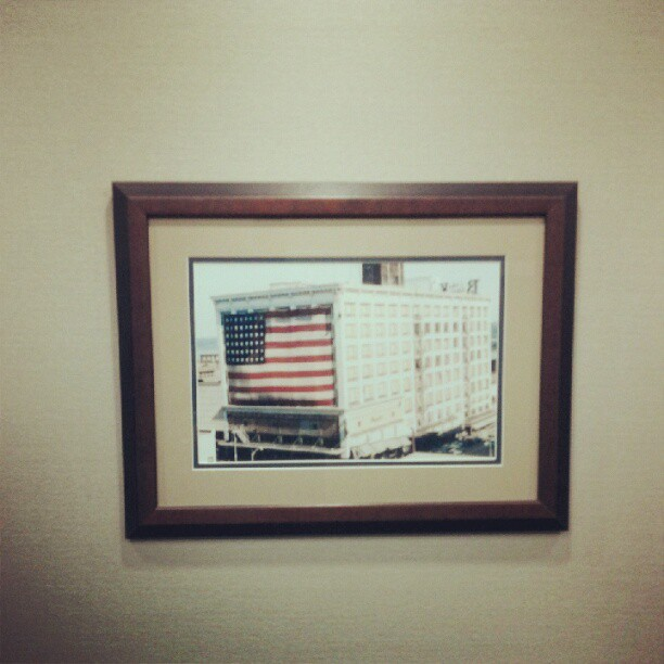 Amerikuh (Taken with Instagram)