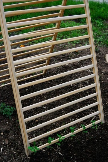 sustainable-sam:  Reusing Cribs and Baby Gates asGarden Trellises