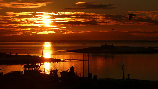 absolutescotland:  Xmas Day Sunrise Orkney by Dennis@Stromness on Flickr.