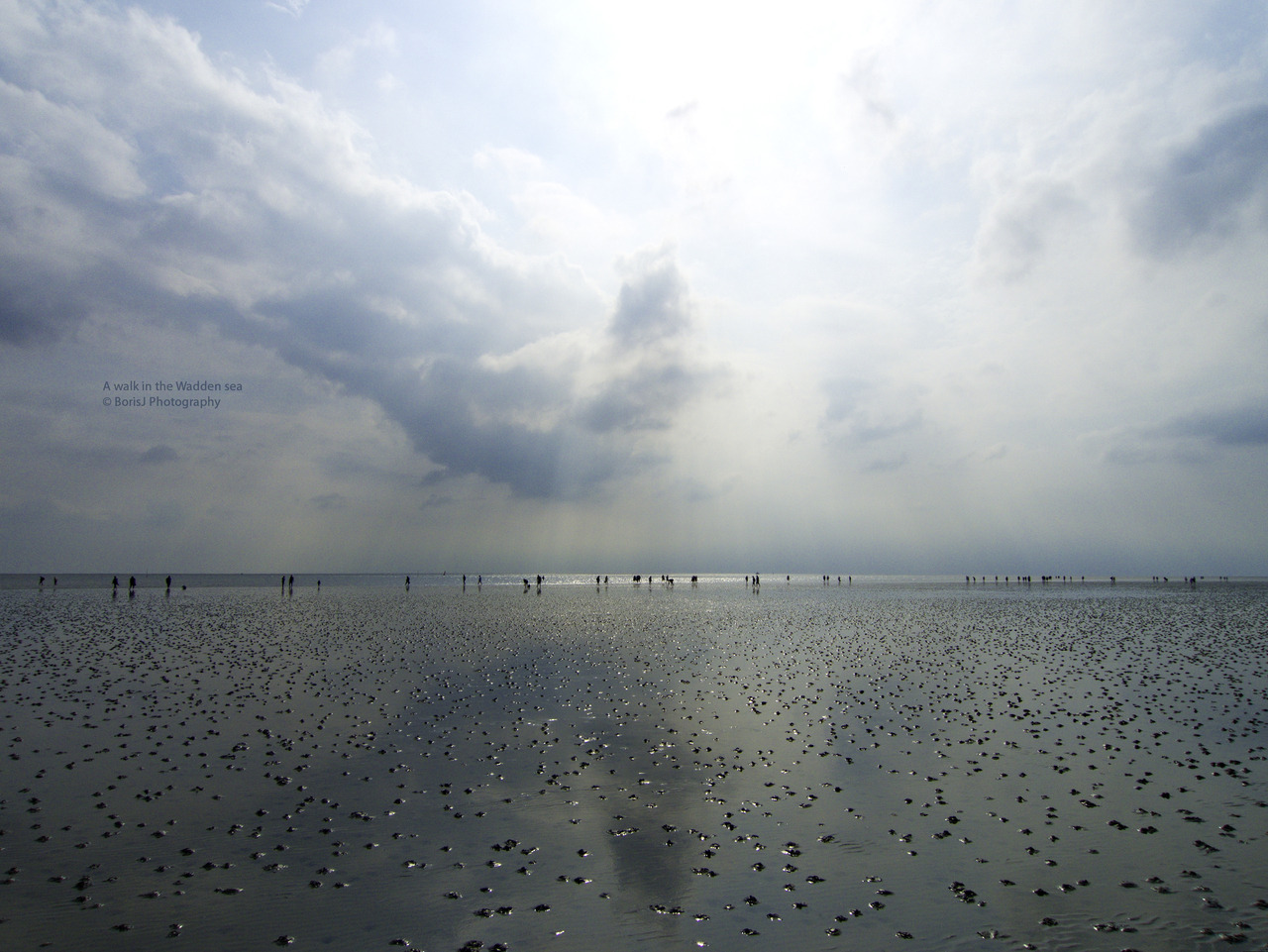 A walk in the Wadden sea A walk thru the Wadden sea in Büsum (Germany). The Wadden sea belongs to the World Heritage and is one of the nicest Areas in Schleswig-Holstein. By the way I love the reflections of the Sky, it was an amazing day! Panasonic Lumix LX31/1000s ISO 80 f/7.1 Büsum, Germany Flickr - Twitter - Facebook - Google+ - Posterous - 500px Copyright © BorisJ Photography - Boris Jusseit - all rights reserved - please do not use this image on any media without my permission.