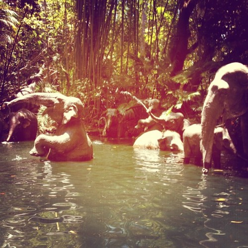 Jungle Cruise! (Taken with Instagram at Adventureland)