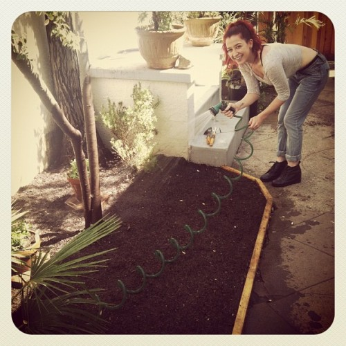 Prepping my new garden! :) (Taken with Instagram)