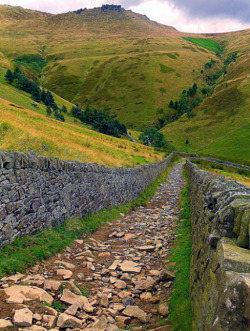 enchantedengland:     One of the best walks in the Derbyshire Peak District of England is Jacob's Ladder; an old pack horse route with a short steep climb leading to a magnificent view of the vale (valley) of Edale. It is bounded to the north by Kinder Scout, a plateau described as being 'full of strange stones and goughs'   I looked up gough, and discovered it is a channel or fissure in a peat moor; also known as a peat hag, which sounds like a Magical Creature to me. Perhaps the Peat Hags collect the strange stones and build oddly-shaped houses with them which you cannot see because you are a Muggle. Anyway, it is always lovely to learn a new word. (Steve Ruffles flickr)