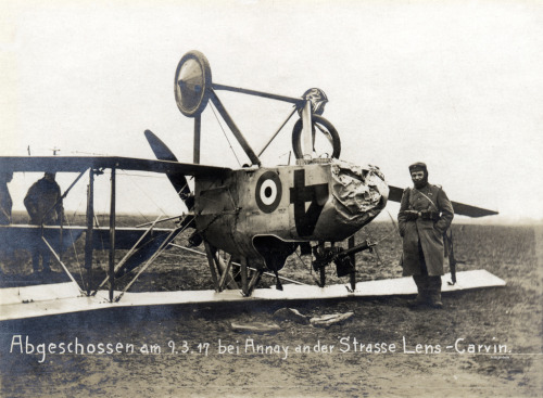 A RFC F.E.8 brought down during World War One