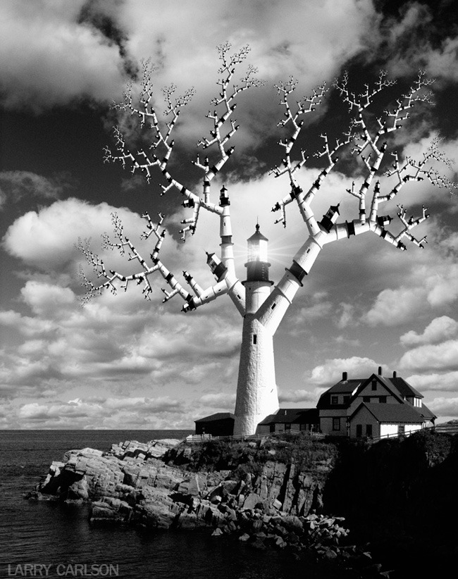 LARRY CARLSON, A Tree Grows in Maine, digital photography, 2012.