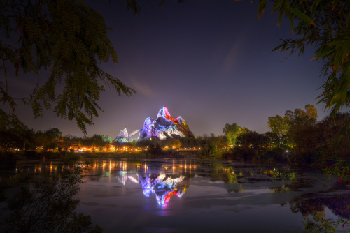Animal Kingdom - The Natives Are Restless at Night by SpreadTheMagic on Flickr.