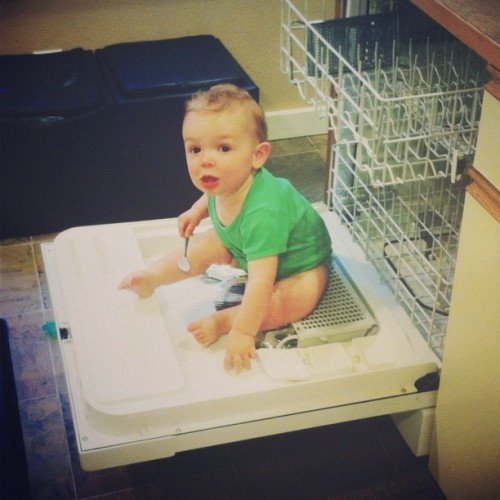 Baby in the dishwasher! Fear not, it's my nephew Russell—he's a spatial navigation expert. in#vscocam #baby #fun (Taken with Instagram)