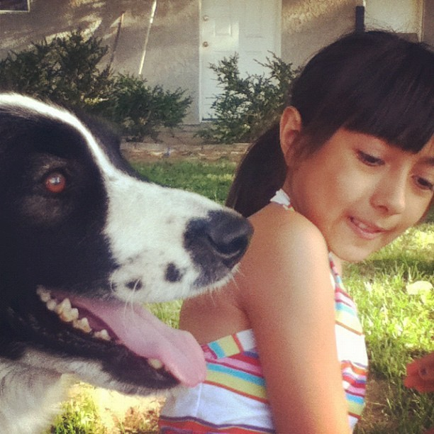 Zorro and Gabby :) #Backyard #SummerFun (Taken with Instagram)