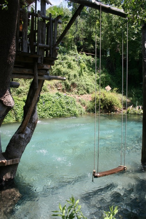 delmis:  my-mochi:  sugarspacebunny:  fuckyeahbeautifulhomes:  Swimming pool made to look like a river.  ohh swing above waterrr  wow that's pretty
