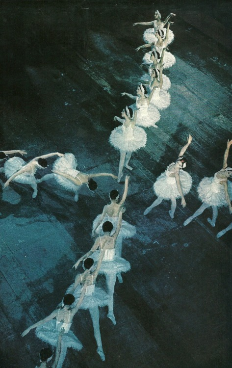 vintagenatgeographic:  The Royal Danish Ballet National Geographic | February 1974