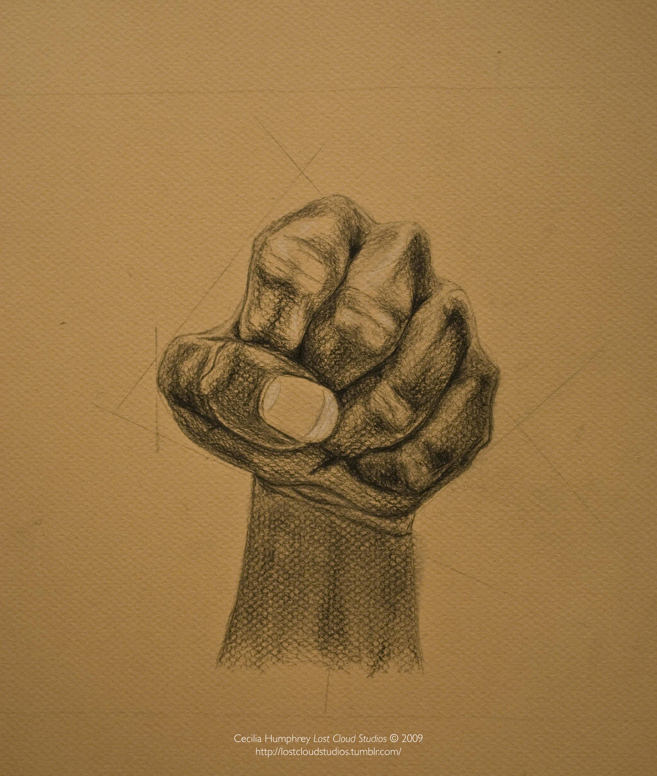 Study of (my) Fist  (2009) Cecilia Humphrey. Pencil on Paper.