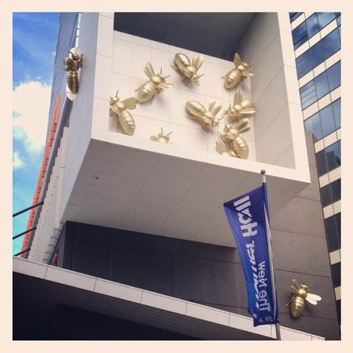 Bees in the city. <3 #melbourne #fun #happysnaps  (Taken with Instagram)