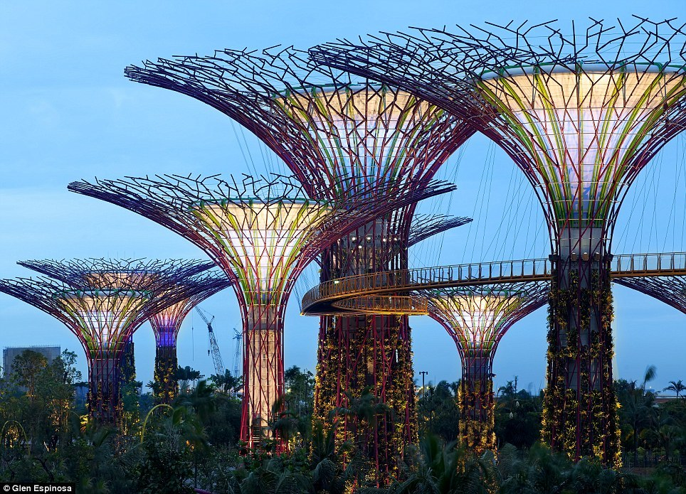 """Super Trees"" at Gardens by the Bay in Singapore"