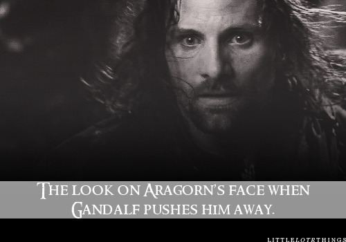 The look on Aragorn's face when Gandalf pushes him away. Submitted by wideapertures
