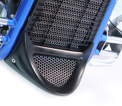 DEAL OF THE DAY!!! The Honda Fury Lower Chin Scoop was designed to make your Fury look lower and faster while standing still. This simple bolt on item flows perfectly with the stock radiator cover, making it look like one complete part from the factory.This product does not bolt on to the aftermarket grills, if you decide to purchase, No returns or warranties on modified items do to improper install. Picture above shows the Chin Scoop with the optional Honey Comb Screen.