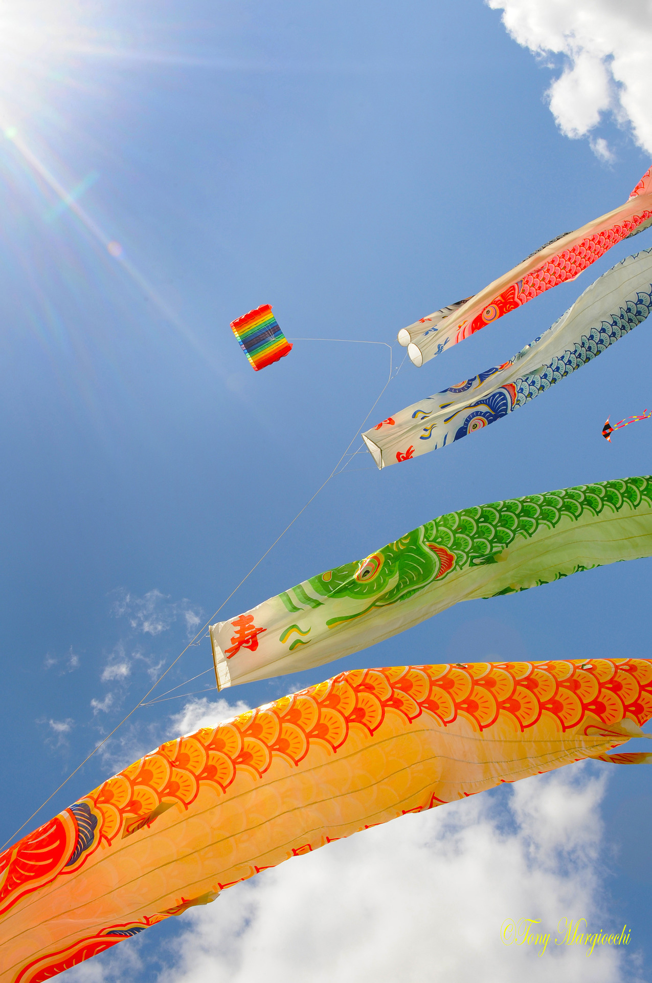 mtshowr21:  Kite Festival Dunstable Downs 2012 (via Tony Margiocchi (Snapperz))