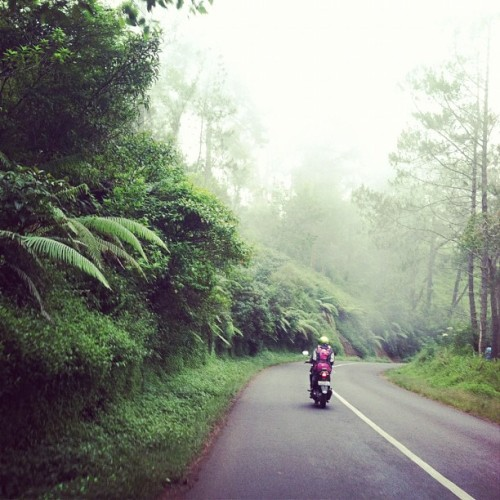 Exploring Bali via motorbike. Photo by wavesnwaves