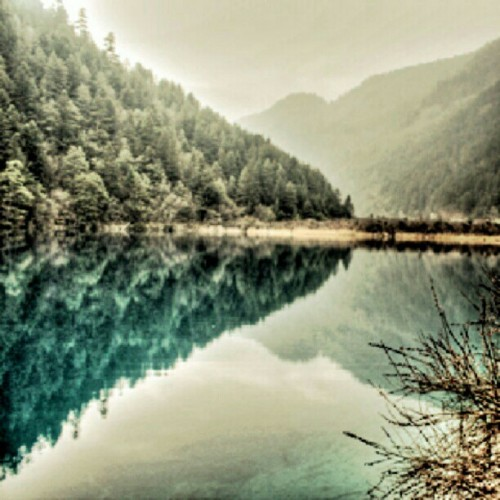 Filtered edition of my symmetry shot at a lake in Jiuzhaigou, Chengdu. Loving the definition of the trees. (Taken with Instagram)