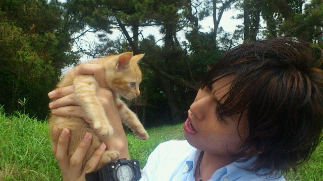 hakaseheart:  IT'S A PHOTO OF KIRIYAMA RENN WITH A KITTEN. AASDGHAOISDFJAOsdfjiA:OAIGJAO:IJEFASJIOO:DFJ  Renn-san…