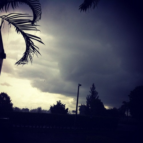 Summer in Florida  (Taken with Instagram)