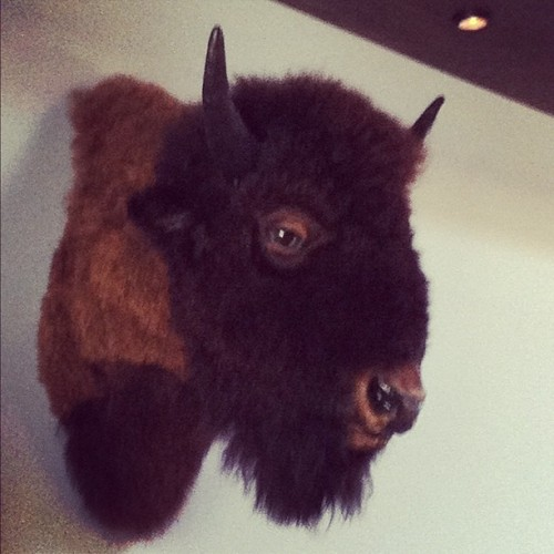 Buffalo Joe. (Taken with Instagram at Lone Star Taco Bar)