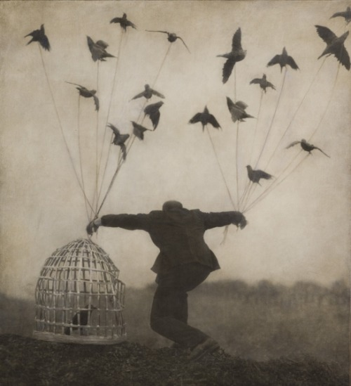 "arpeggia:  ""Earth Elegies"", photography by Robert and Shana ParkeHarrison Related post: here"