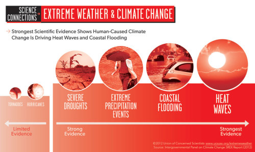 Connecting the Science Dots: Extreme Weather & Climate Change (Infographic) Details here.  Related: 'Special Report on Managing the Risks of Extreme Events and Disasters to Advance Climate Change Adaptation' (IPCC, 2011) (Infographic source: UCS)