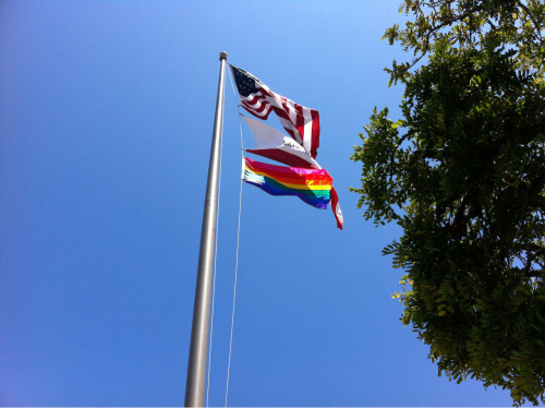 Look at that Pride flag fly!! So beautiful!