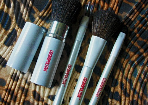 my holiday brush set <3