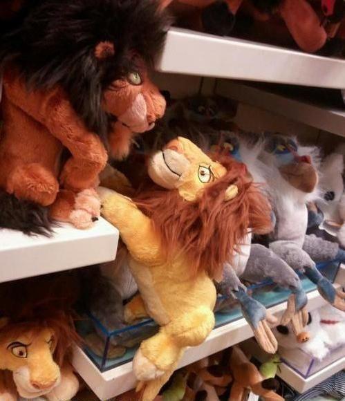 funnyordie:  Don't do it, Scar!