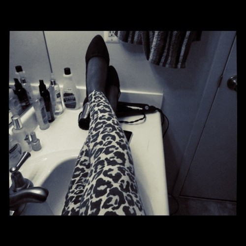 Leopard… (Taken with Instagram)